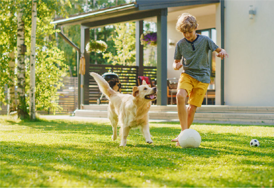 Boy is playing on a perfectly manicured lawn with a ball and his dog